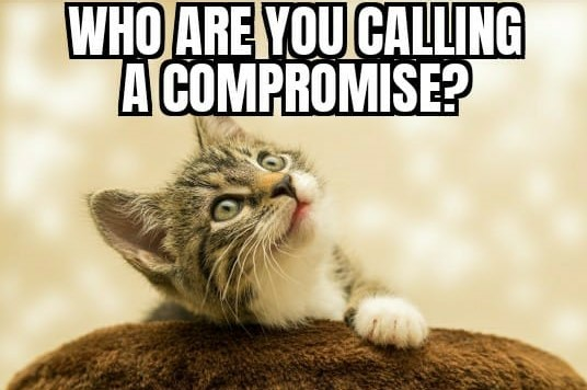 Buying a shared ownership property- compromise cat